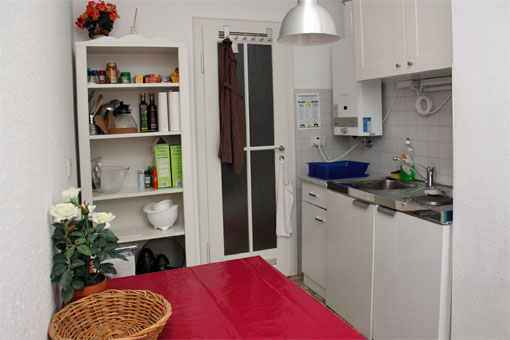 1-bedroom apartment - kitchen