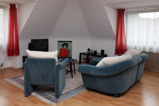 1.5-bedroom apartment - living room
