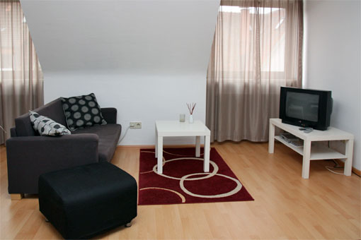 1-bedroom apartment - living room